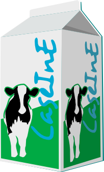 Logo Caseine